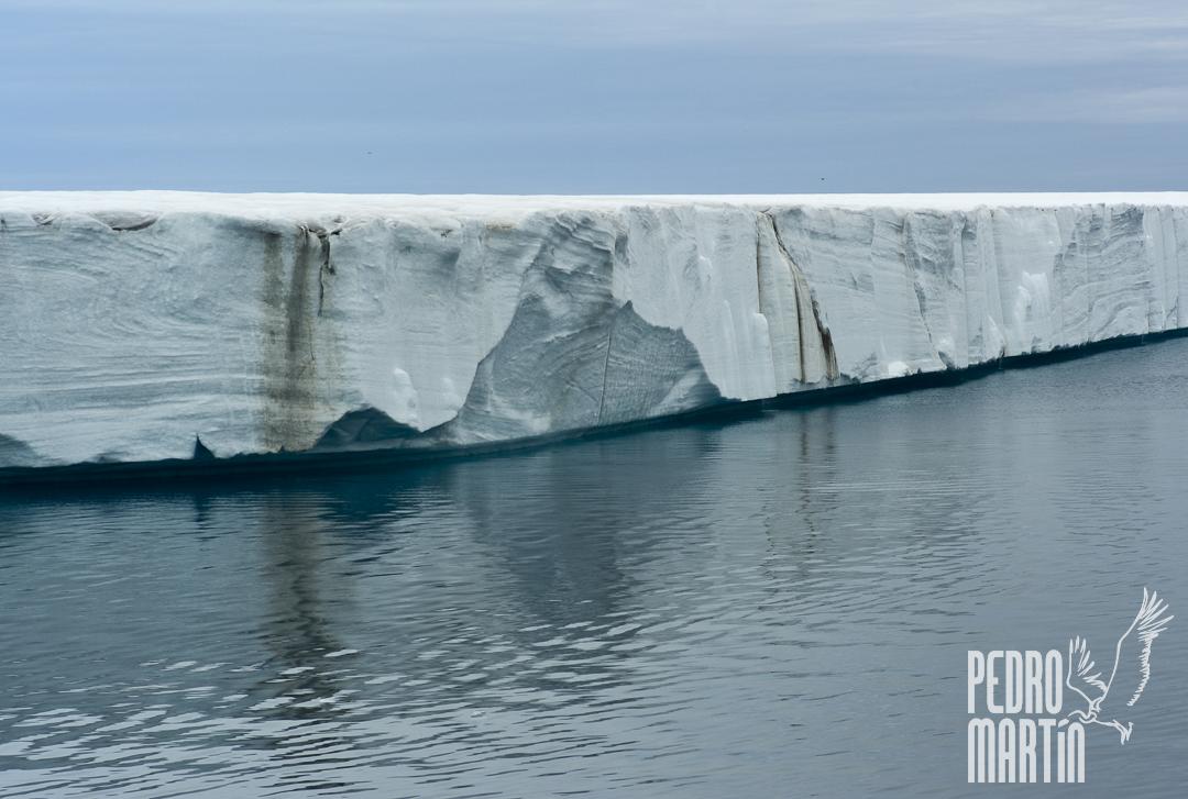 Casquete de hielo de Austfonna (Desde el estrecho de Hinlopen)