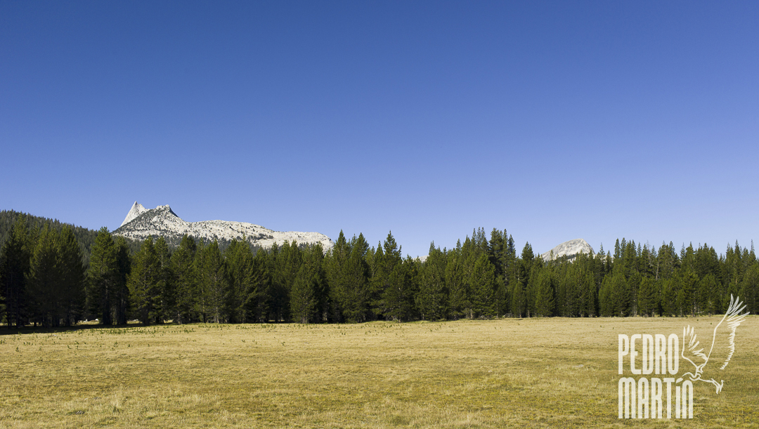 Unicorn Peak, Toulumne Meadows